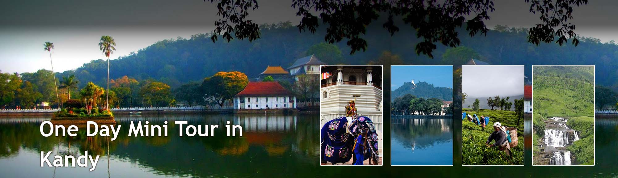 Kandy-one day tour